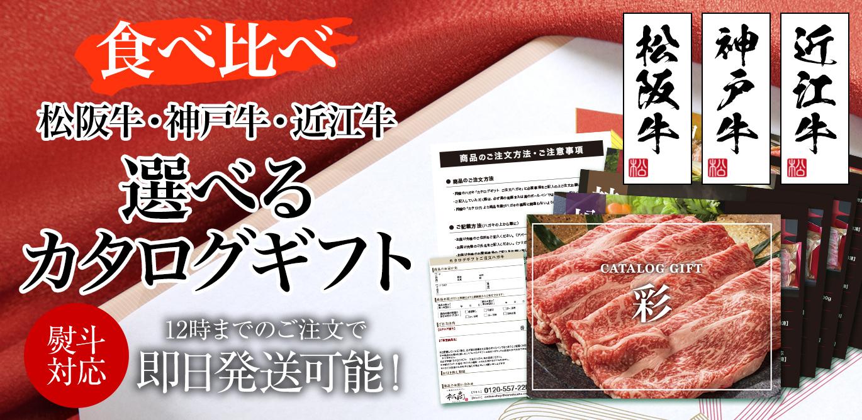 /fs-group/catalog/t-sl-catalog.jpg